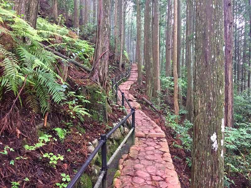 曼陀羅の滝への急坂
