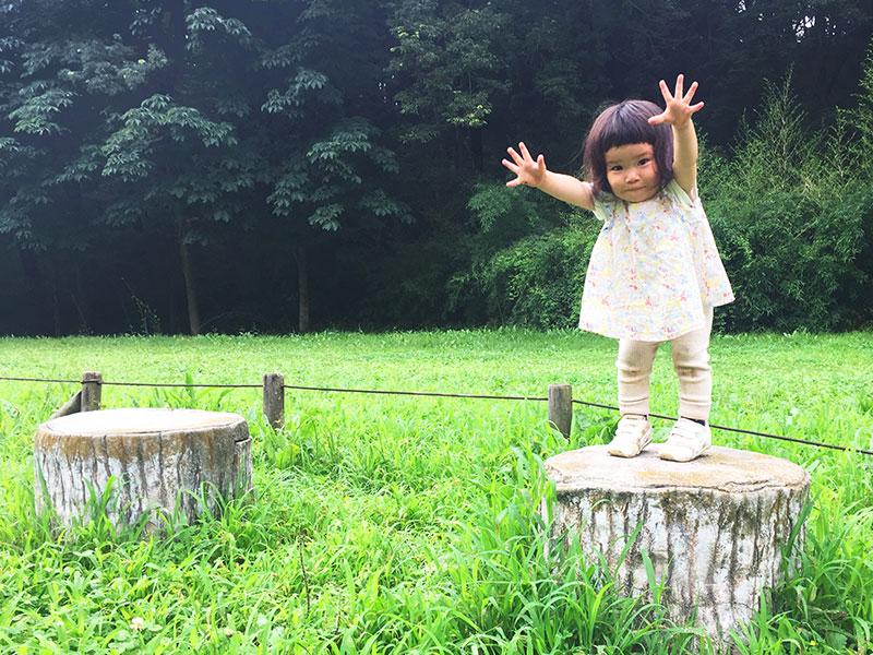 野山北・六道山公園「赤坂谷戸」だれでも里山コースで森林浴