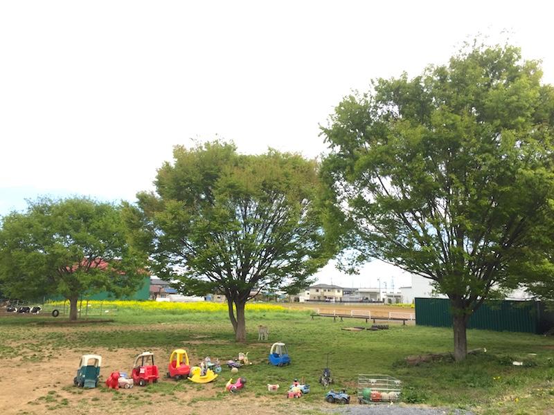 加藤牧場の裏庭