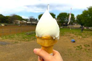 埼玉県日高市の加藤牧場で極上チーズ丼&絶品ジェラート