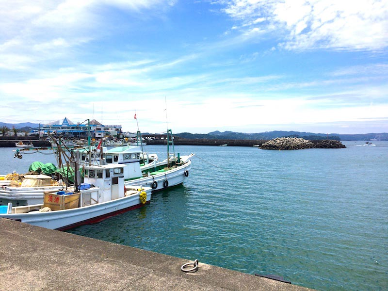 湊浦漁協食堂からの漁港